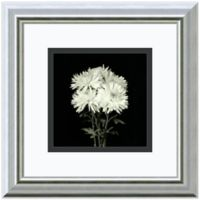 Walter Gritsik Flower Series IX Framed Print Wall Art