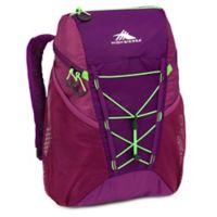 High Sierra® Pack-N-Go 18-Liter Packable Backpack in Purple