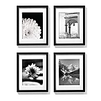 11-Inch x 14-Inch Gallery Frames in Black (Set of 4)