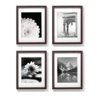 11-Inch x 14-Inch Gallery Frames in Espresso (Set of 4)