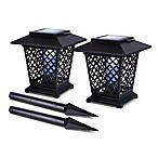 Solar Lantern Bug Zappers (Set of 2)