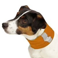 Small Insect Shield Neck Gaiter in Carrot