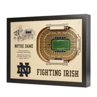 University of Notre Dame Stadium Views Wall Art