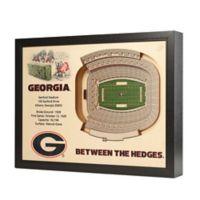 University of Georgia Stadium Views Wall Art