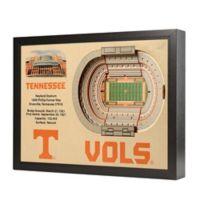 University of Tennessee Stadium Views Wall Art