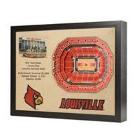 University Louisville Stadium Views Wall Art