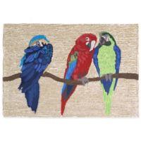 Trans-Ocean 30-Inch x 48-Inch Parrots Bright Door Mat