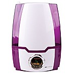 Air Innovations 1.37 Gallon Ultrasonic Digital Humidifier in Purple