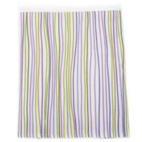 Glenna Jean Lulu Queen Bed Skirt in Multi Stripe