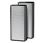 HoMedics® Replacement True HEPA Filter (Set of 2)