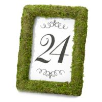 Lillian Rose™ Moss 4-Inch x 6-Inch Table Frame in Green