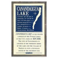 Vintage Canandaigua Lake Sign Framed Wall Art in Cream