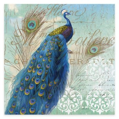Blue Peacock I Gallery Canvas Wall Art