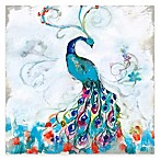 Courtside Market Colorful Peacock II Gallery Canvas Wall Art