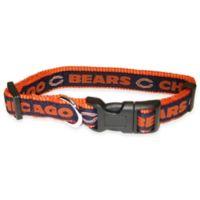 NFL Chicago Bears Medium Pet Collar