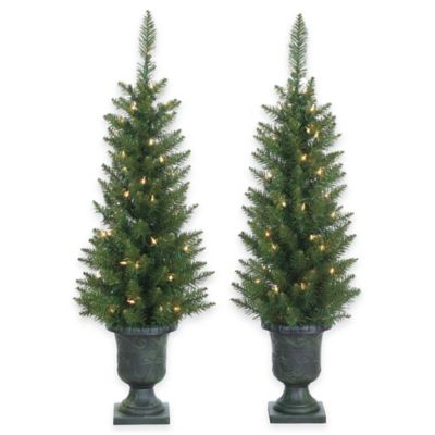 Good 3.5 Foot Pre Lit Potted Norway Pine Trees (Set Of 2)