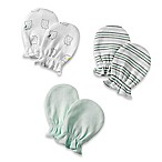 Sterling Baby Newborn 3-Pack Mittens in Mint/Grey/White