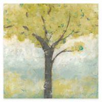 Spring Arbor I Canvas Wall Art