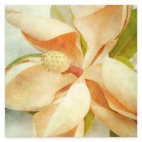 Vintage Magnolia I Canvas Wall Art