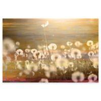 Parvez Taj Field 45-Inch x 30-Inch Canvas Wall Art