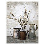 Courtside Market Three Watering Cans Canvas Wall Art