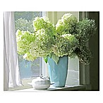 Courtside Market Vase in the Window II Canvas Wall Art
