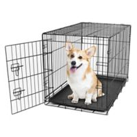 Carlson Secure and Compact Single-Door Medium Dog Crate