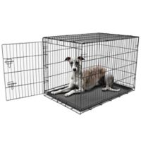 Carlson Secure and Compact Single-Door Large Dog Crate