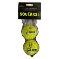 Hyper Pet™ Squeaks! 2-Pack Balls in Green