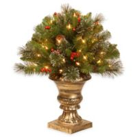 National Tree 24-Inch Crestwood Spruce Porch Bush with Clear Lights