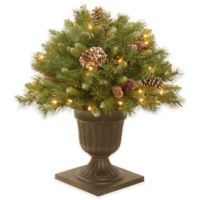 National Tree 24-Inch Frosted Berry Porch Bush with Clear Lights