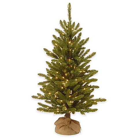 national tree company 4 foot kensington pine pre lit christmas tree with clear lights bed bath. Black Bedroom Furniture Sets. Home Design Ideas
