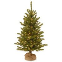 National Tree Company 4-Foot Kensington Pine Pre-Lit Christmas Tree with Clear Lights