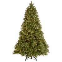 National Tree 7.5-Foot Downswept Douglas Fir Pre-Lit Christmas Tree with PowerConnect™ Clear Lights