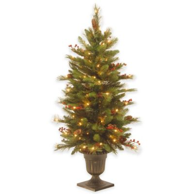 Buy Outdoor Decorative Trees From Bed Bath Amp Beyond