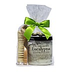 B. Witching Bath Co. Eucalyptus Sugar Scrub and Brush Gift Set
