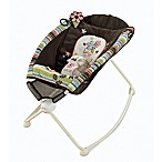 Fisher-Price® Newborn Rock 'n Play™ Sleeper in Earthy Floral