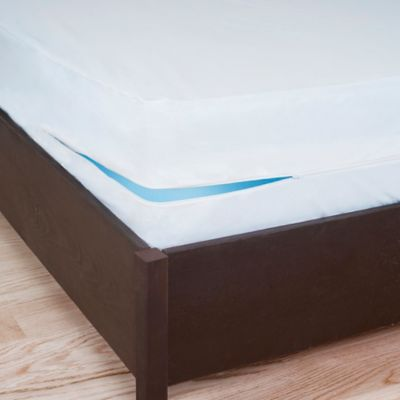 Remedy Bed Bug Dust Mite Queen Box Spring Protector In White