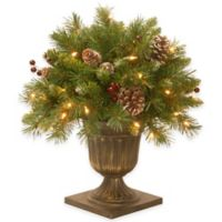 National Tree Company 18-Inch Frosted Berry Pre-Lit Porch Bush