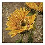Thirstystone® Dreamers Sunflower Coaster