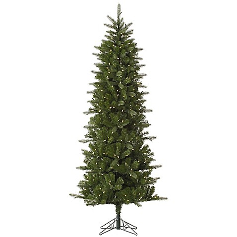 buy vickerman 7 5 foot carolina pencil spruce pre lit christmas tree with warm white led lights. Black Bedroom Furniture Sets. Home Design Ideas