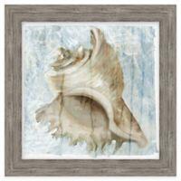 Framed Giclée Watercolor 2 Shell Wall Art