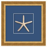 Framed Starfish Shadow Box Wall Art