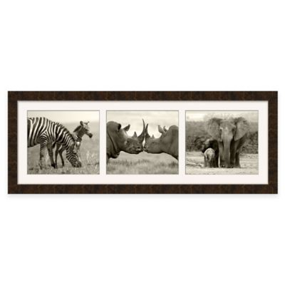 Wonderful Safari Triptych Framed Wall Art In Sepia Tone