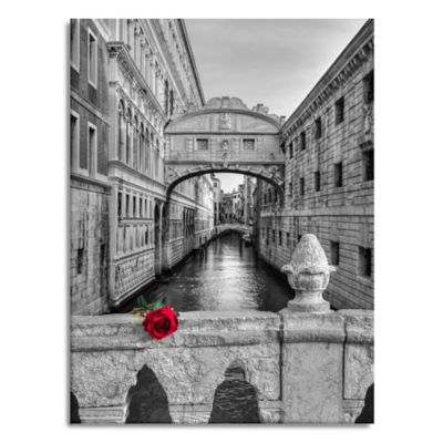 Buy Venice Wall from Bed Bath & Beyond