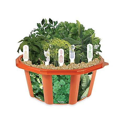 Kitchen Herb Garden Bed Bath And Beyond