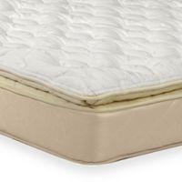 Buy Wolf Mattresses Bed Bath Beyond