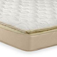 Wolf Sleep Comfort Pillowtop Queen Mattress