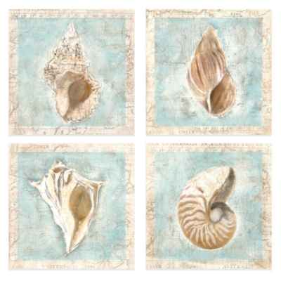 Framed Shells 12-Inch x 12-Inch Embellished Canvas Wall Art (Set of 4)