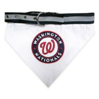 MLB Washington Nationals Large Dog Collar Bandana
